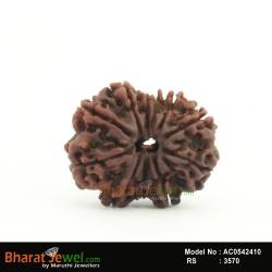 11 MukhiRudraksha – 11 FaceRudraksha – Eleven   MukhiRudraksha- Collector 11 Mukhi Nepali Rudraksha – Nepali Bead