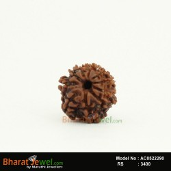 10 MukhiRudraksha – 10 FaceRudraksha – Ten   MukhiRudraksha- Collector 10 Mukhi Nepali Rudraksha – Nepali Bead