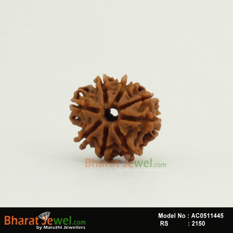 8 MukhiRudraksha – 8 FaceRudraksha – Eignt  MukhiRudraksha- Collector 8 Mukhi Nepali Rudraksha – Nepali Bead