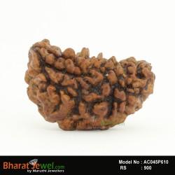 1 MukhiRudraksha – 1 FaceRudraksha – one MukhiRudraksha- Collector 1 Mukhi Nepali Rudraksha – Nepali Bead